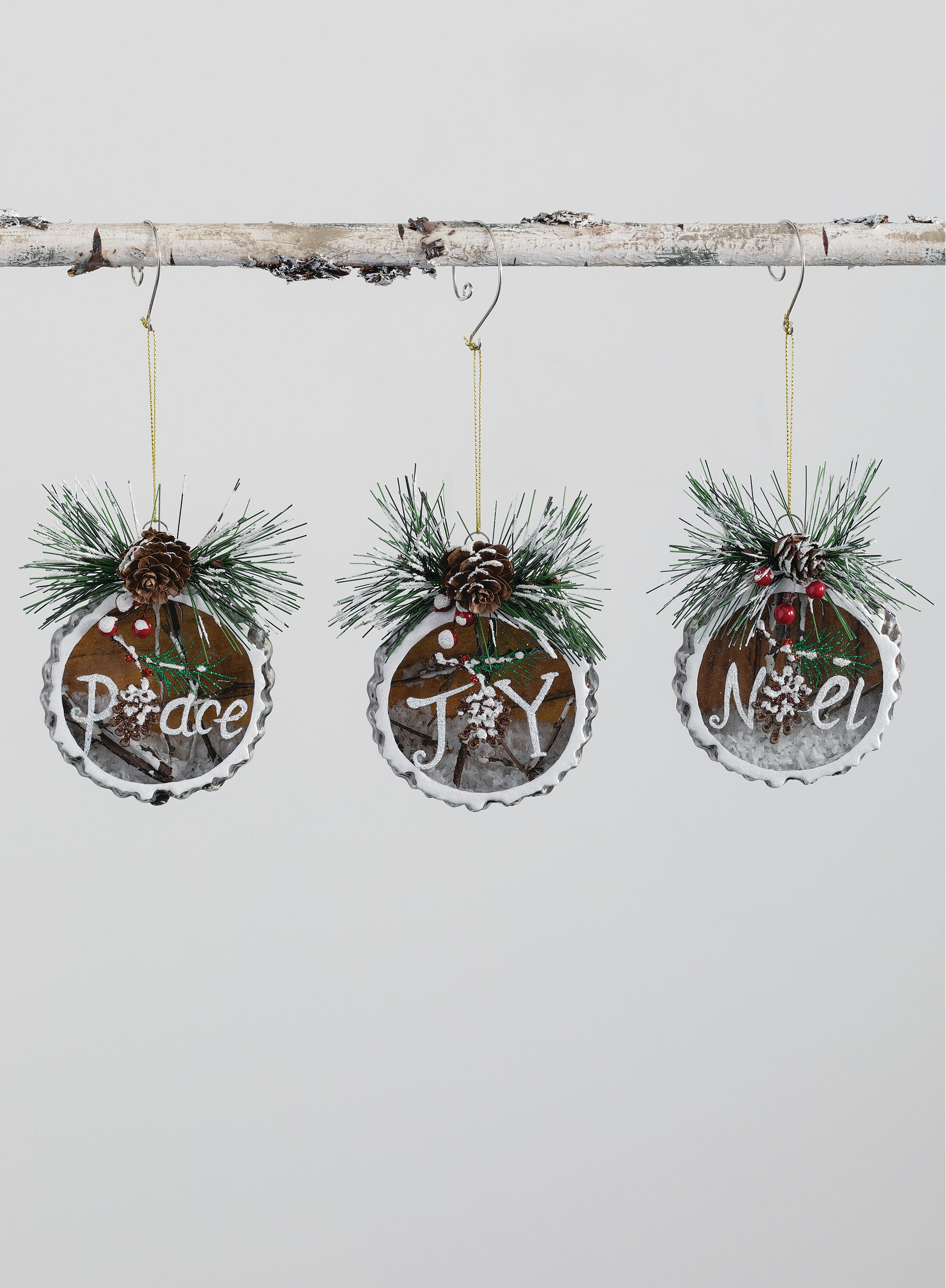 The Holiday Aisle 3 Piece Joy Noel Peace Holiday Shaped Ornament Set Wayfair