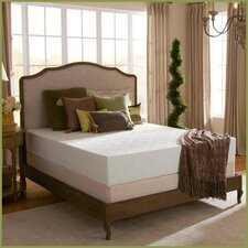 Eco Bliss 12 Medium Latex Mattress by Plush Beds