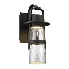 Balthus 1-Light Outdoor Wall Lantern