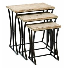 Metal and Wood 3 Piece Nesting Tables by Cole & Grey
