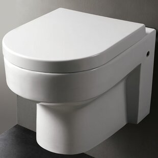 EAGO Modern Dual Flush Elongated Toilet Bowl