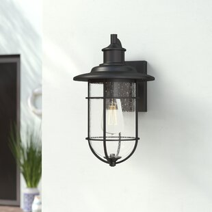 Breakwater Bay Norgren 1-Light Outdoor Wall Lantern