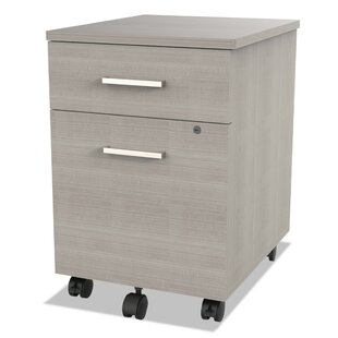 Monterey 2-Drawer Mobile Vertical Filing Cabinet by Ebern Designs Reviews