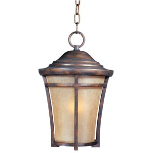 Great choice Colton 1-Light Outdoor Pendant By Darby Home Co