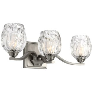 Louisbourg 3-Light Bath Vanity Light By Lark Manor