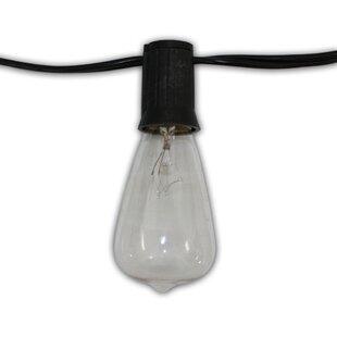 Aspen Brands Edison 24-Light Globe String Lights