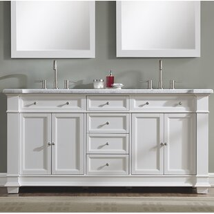 Riccardo 72 Double Bathroom Vanity Set by Darby Home Co