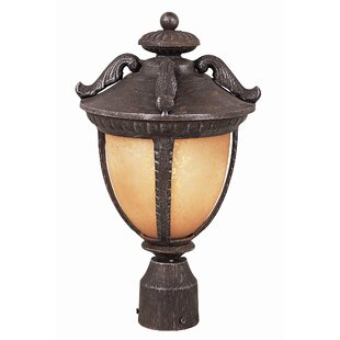 Tucker Exterior Post Lantern in Burnt Sienna by Charlton Home