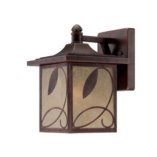 Reviews Devonwood 1-Light Outdoor Wall Lantern By Designers Fountain