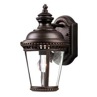 Affordable Chesapeake 1-Light Outdoor Wall Lantern By Darby Home Co