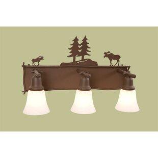 Steel Partners Moose Glacier 3-Light Vanity Light
