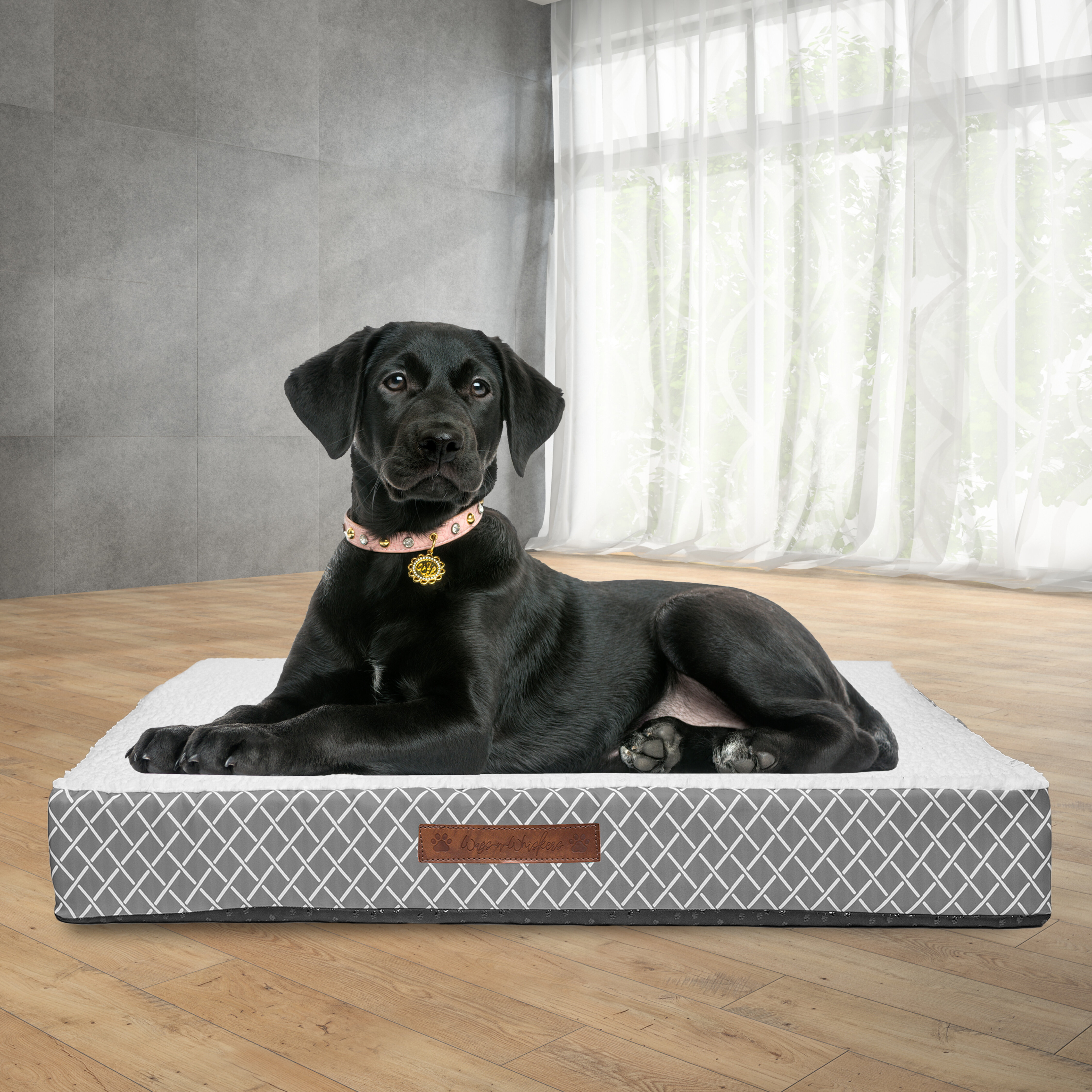 Dr International Atkins Lattice Orthopedic Pet Mat Reviews