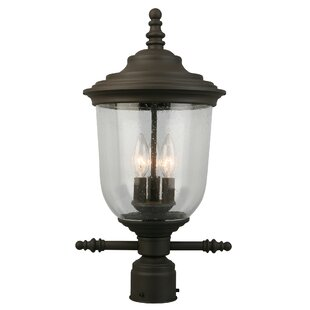 Deals Dransfield 3-Light Lantern Head By Canora Grey