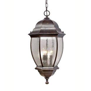 Mariana Home 3-Light Outdoor Hanging Lantern