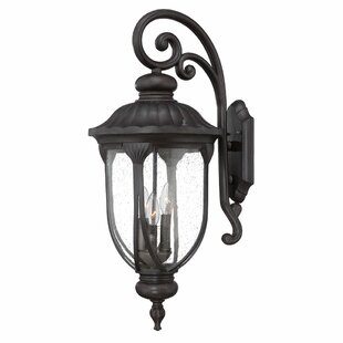 Angie Outdoor Wall Lantern