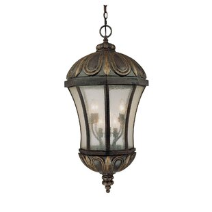 Astoria Grand Lisk 8-Light Outdoor Hanging Lantern