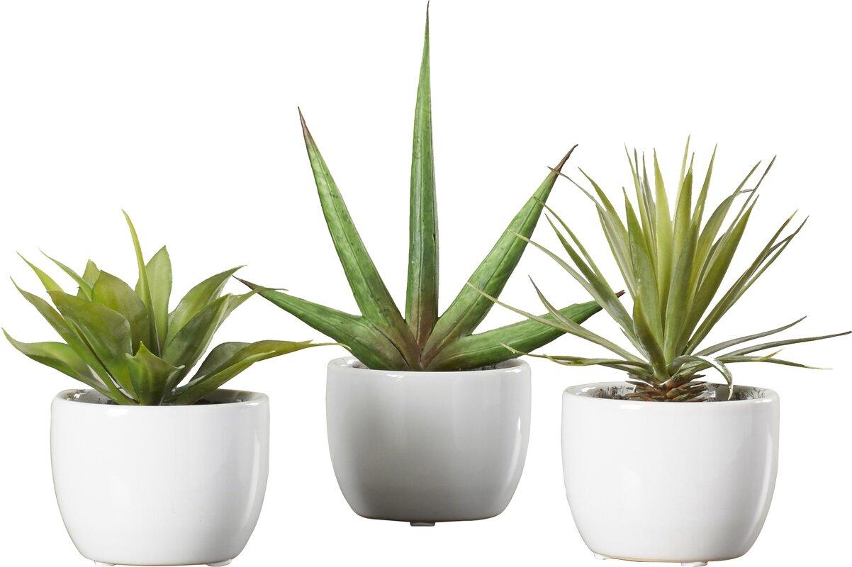 Faux Plants & Trees