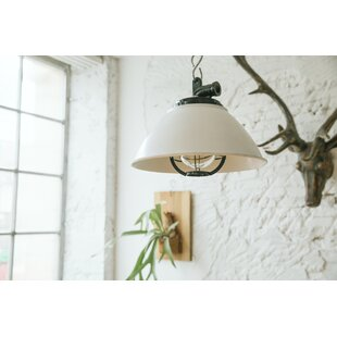 Affordable Sunbury 1-light Outdoor Pendant By Cocoweb