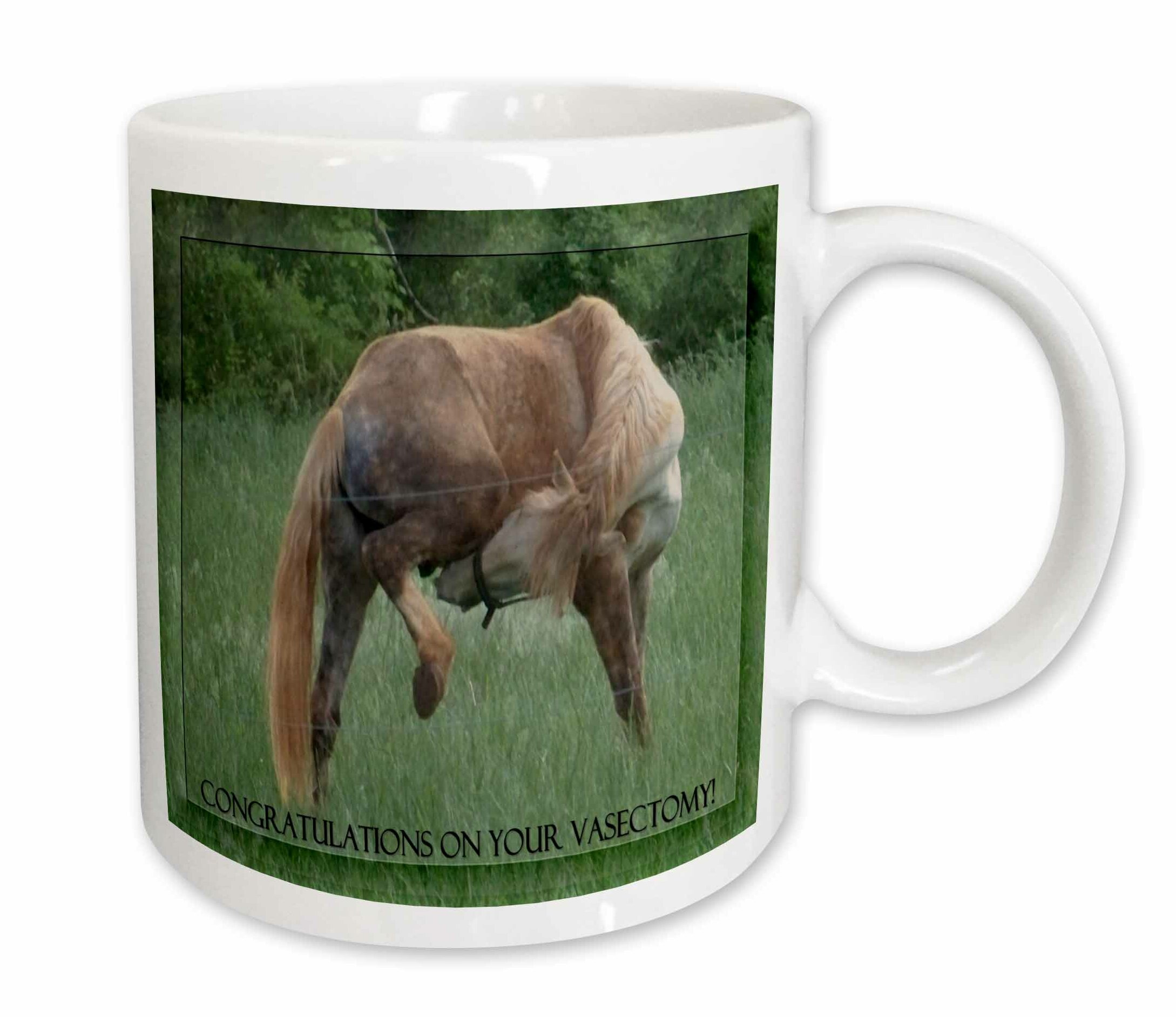 East Urban Home Funny Horse Background Congratulations On Vasectomy Coffee Mug Wayfair