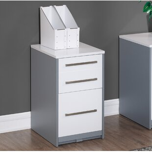 Rivas 2-Drawer Vertical Filing Cabinet by Ebern Designs