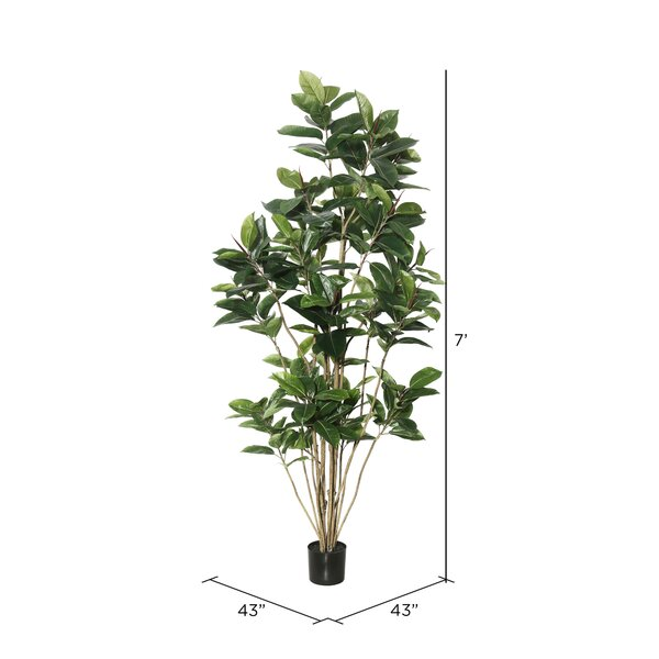 Wrought Studio Artificial Foliage Rubber Tree In Pot Reviews Wayfair