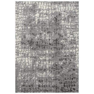 Online Reviews Barger Gray/White Area Rug By Williston Forge