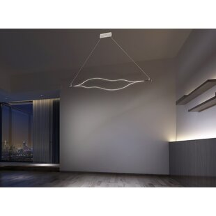 Willowridge 1-Light LED No..