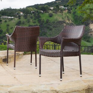 Mercury Row Danna Patio Chair (Set of 2)