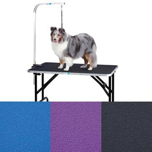 Dog grooming tables bath tubs youll love wayfair dog grooming table with arm solutioingenieria Gallery