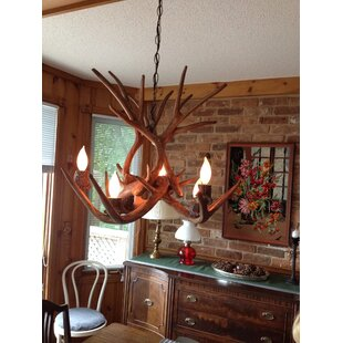 Loon Peak Price Tail 6-Light Shaded Chandelier