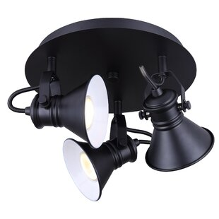 Canarm Morocco 3-Light Spot Light
