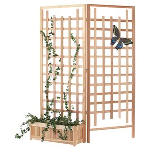 All Things Cedar 3 Piece Wood Trellis Set