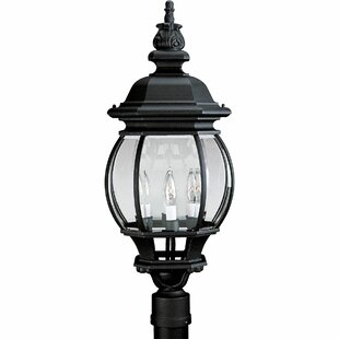 Alcott Hill Triplehorn 3-Light Antique Lantern Head in Black