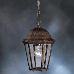 Astoria Grand Connan 1-Light Outdoor Hanging Lantern