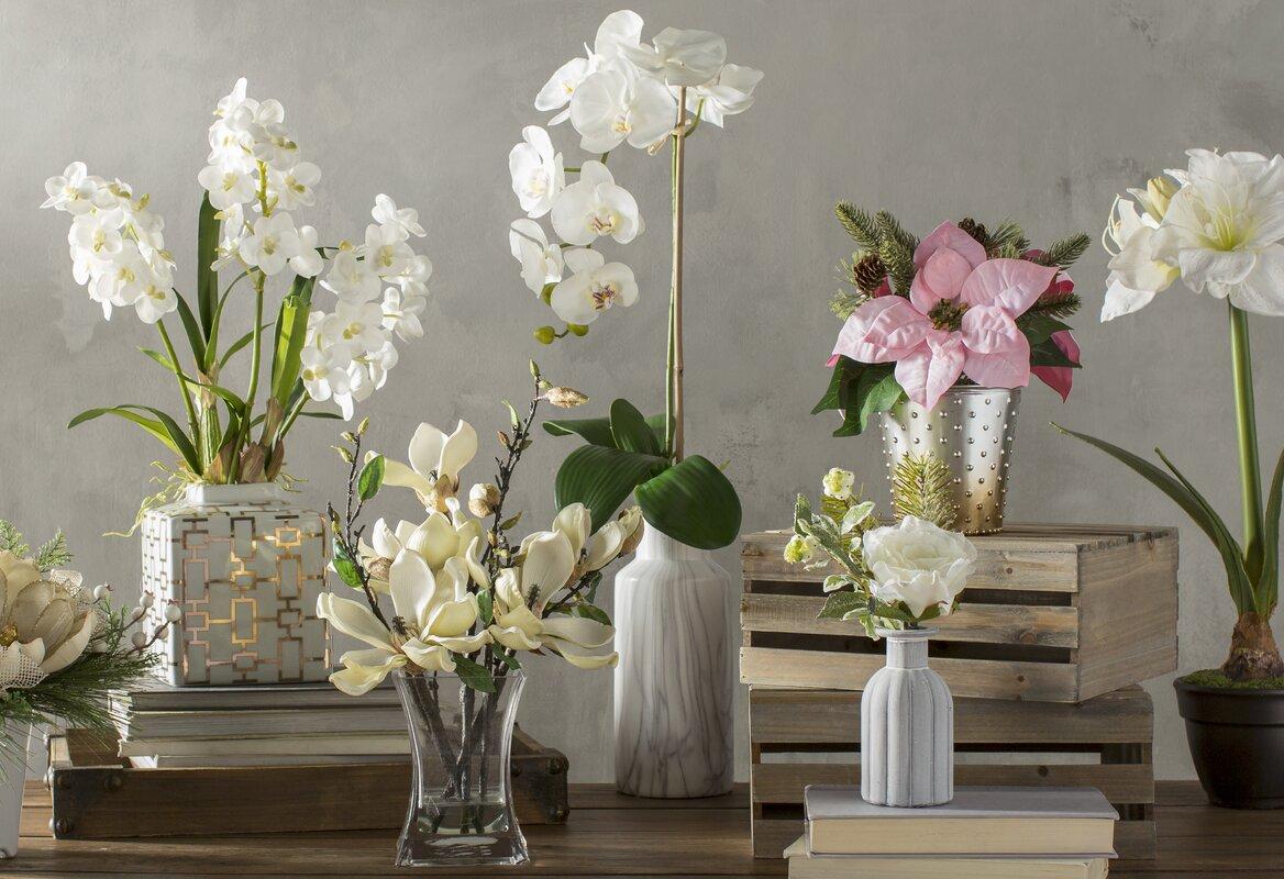 Phalaenopsis orchid floral arrangements in vase reviews joss phalaenopsis orchid floral arrangements in vase reviewsmspy