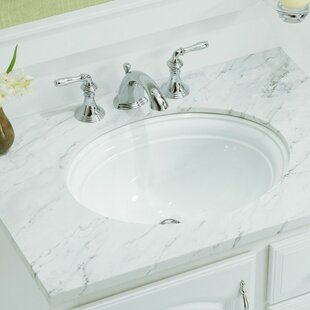 Look for Devonshire Ceramic Oval Undermount Bathroom Sink with Overflow By Kohler
