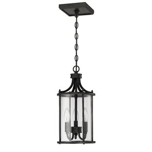 Gracie Oaks Arshan 3-Light Outdoor Pendant