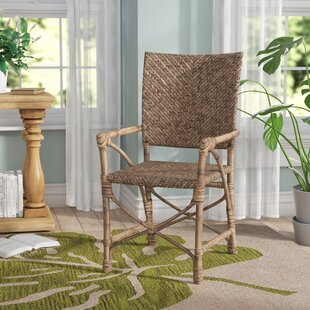 Hillview Armchair (Set Of 2) By Beachcrest Home