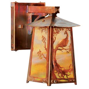 Inexpensive Hoch Peacock LED Outdoor Wall Lantern By August Grove