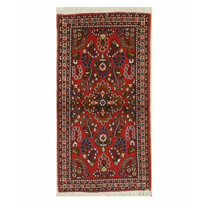 Sarouk Hand-Knotted Red Area Rug