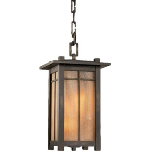 Capistrano 4-Light Outdoor Hanging Lantern