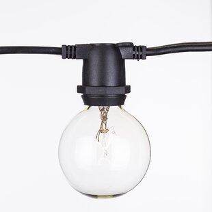Aspen Brands 15-Light Globe String Lights