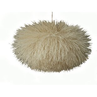 Urchin 1-Light Novelty Pendant by Asian Art Imports