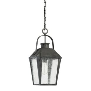 Top Ellenburg 1-Light Outdoor Hanging Lantern By Darby Home Co