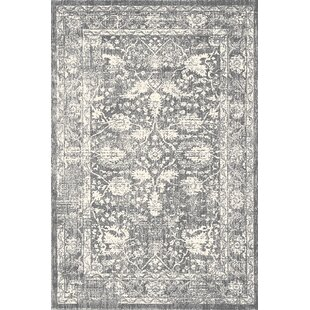 Trumbull Grey Rug by Charlton Home
