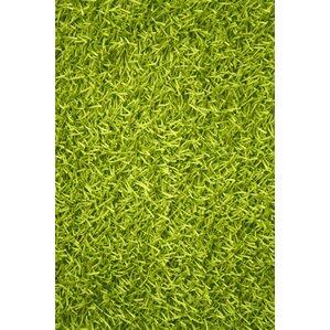 Sara Lime Green Shag Area Rug