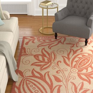 Great choice Octavius Natural / Red Outdoor Area Rug By Charlton Home