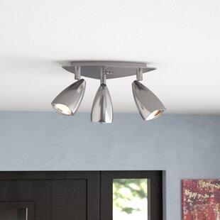 Mazur 3-Light Directional & Spotlight by Ebern Designs
