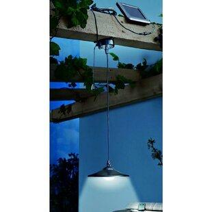 Wrought Studio Blumberg Remote Control 1-Light Outdoor Pendant