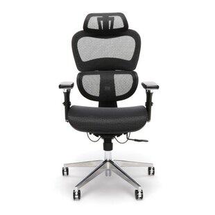 Latitude Run Aisling Ergo Mesh Office Chair